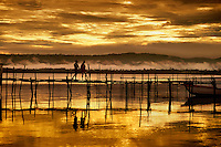 Pier at sunset on Lake Poso Pendolo Sulawesi Indonesia.