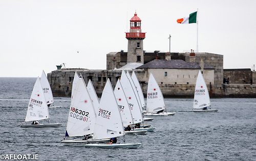 DBSC dinghy fleets will start a mini trainig series on Tuesdays and Saturdays from May 15th