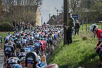peloton over the Holleweg<br /> <br /> 72nd Dwars Door Vlaanderen (1.UWT)<br /> 1day race: Roeselare › Waregem BEL (203.4km)