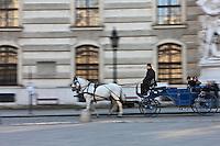 Europe/Autriche/Niederösterreich/Vienne: Fiacre sur la Michaelerplatz devant  la Hofburg