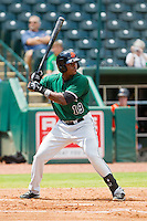 Rashawn Payne (19) of the Augusta GreenJackets at bat against the Greensboro Grasshoppers at NewBridge Bank Park on August 11, 2013 in Greensboro, North Carolina.  The GreenJackets defeated the Grasshoppers 6-5 in game one of a double-header.  (Brian Westerholt/Four Seam Images)