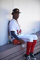 Mesa Solar Sox outfielder Victor Robles (14), of the Washington Nationals organization, before an Arizona Fall League game against the Peoria Javelinas on October 25, 2017 at Sloan Park in Mesa, Arizona. The Solar Sox defeated the Javelinas 6-3. (Zachary Lucy/Four Seam Images)