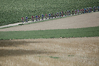 Peloton.  <br /> <br /> Binckbank Tour 2018 (UCI World Tour)<br /> Stage 6: Riemst (BE) - Sittard-Geleen (NL) 182,2km