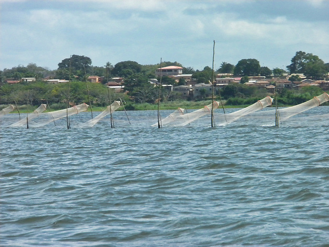 Nets in Lake Togo