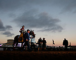DEL MAR, CA - NOVEMBER 04: Gun Runner  #5, ridden by Florent Geroux, walk on the track after winning the Breeders' Cup Classic race on Day 2 of the 2017 Breeders' Cup World Championships at Del Mar Racing Club on November 4, 2017 in Del Mar, California. (Photo by Kazushi Ishida/Eclipse Sportswire/Breeders Cup/
