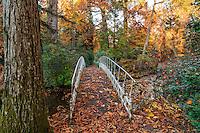 France, Allier (03), Villeneuve-sur-Allier, Arboretum de Balaine en automne, passerelle