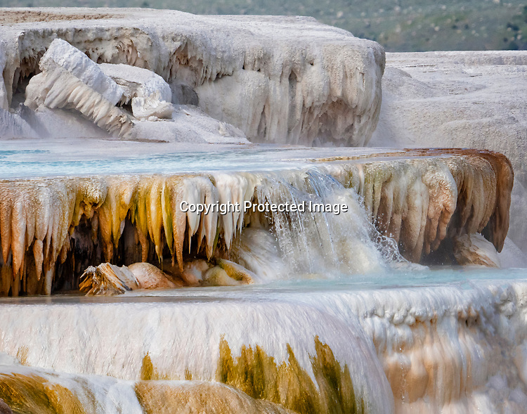 Mammoth Hot Springs is a popular tourist stop in Yellowstone.