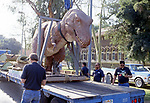 Delivery of dinosaur exhibit to the Museum of Natural History in Los Angeles, CA