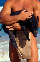 Man in loin cloth carrying a pig, a reenactment of the early Hawaiian migration from Tahiti when animals and crops were transported