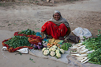 Bharatpur, Rajasthan, India.  Old Woman Selling Vegetables Along the Roadside.