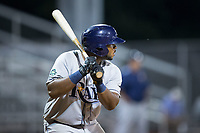 Devin Davis (32) of the Princeton Rays at bat against the Danville Braves at American Legion Post 325 Field on June 25, 2017 in Danville, Virginia.  The Braves walked-off the Rays 7-6 in 11 innings.  (Brian Westerholt/Four Seam Images)