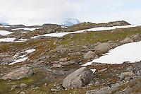 Jotunheimen, Jotunheimen-Nationalpark, Schnee, Schneefelder, Fjell, Fjäll, Tundra, Bergtundra, Nationalpark, Norwegen, Skandinavien. Jotunheimen National Park, Norway, fell, Scandinavia