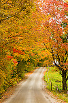 Autumn in Westmore, Vermont, USA