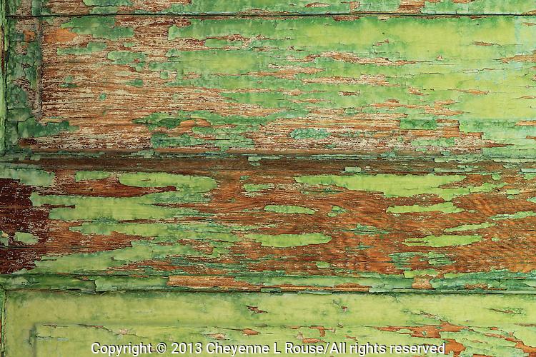 Weathered green door texture - Arizona
