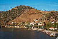douro river and steep vineyards pinhao douro portugal