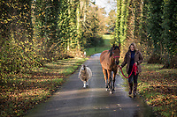 The Countess of Carnarvon leading a horse with a sheep in tow