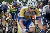 Peloton. <br /> <br /> 11th Heistse Pijl 2018<br /> Turnhout > Heist-op-den Berg 194km (BEL)