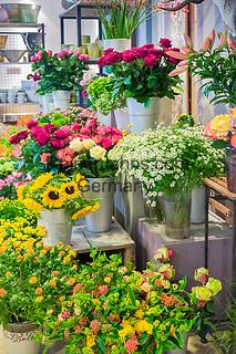 Deutschland, Bayern, Mittelfranken, Naturpark Altmuehltal, Gunzenhausen: Blumengeschaeft- innen | Germany, Bavaria, Middle Franconia, Nature Park Altmuehl Valley, Gunzenhausen: Flower shop - interior