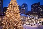 Christmas tree at Quincy Market, Boston, MA