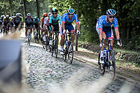 Niki Terpstra (NED/Total Direct Energie) on a cobble sector<br /> <br /> Antwerp Port Epic 2019 <br /> One Day Race: Antwerp > Antwerp 187km<br /> <br /> ©kramon