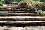 Rock Stairway, Oregon Gardens.  Walkway entering Oregon Gardens.  Oregon Gardens, Silverton, Oregon, USA, an 80 acre botanical garden in the Willamette Valley.  Windy day.