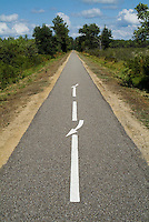 Dividing line on an empty bicycle track going through the Landes Forest, Hostens, France.