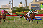 HALLANDALE BEACH, FL - MARCH 05:       #2 Grand Tito with jockey Emisael Jaramillo on board wins the 25th running of the Mac Diarmida Stakes at Gulfstream Park on March 5th, 2016 in Hallandale Beach, Florida. (Photo by Liz Lamont)