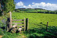 Wales, Offa's Dyke Footpath and Stile, north of Montgomery, Powys.