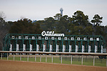 January 23, 2021: Scenery during the Pippin Stakes at Oaklawn Racing Casino Resort in Hot Springs, Arkansas. ©Justin Manning/Eclipse Sportswire/CSM