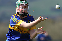 2017 Camogie League: Tipperary v Waterford