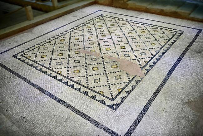Roman mosaics - geometric Mosaic. Poseidon & Euphrates Villa, Ancient Zeugama, 2nd - 3rd century AD . Zeugma Mosaic Museum, Gaziantep, Turkey.