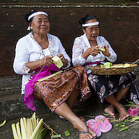 Bali, Indonesia.  Balinese Hindu Women Making Offering Baskets (Canang) from Palm Fronds.