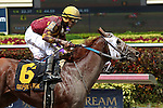 HALLANDALE BEACH, FL -JULY 02:  #6 Rated R Superstar (KY) with jockey Jesus Rios on board passes #1 Awesome Banner (FL) to win the Carry Back Stakes G3  on Summit Of Speed Day at Gulfstream Park on July 02, 2016 in Hallandale Beach, Florida. (Photo by Liz Lamont/Eclipse Sportswire/Getty Images)