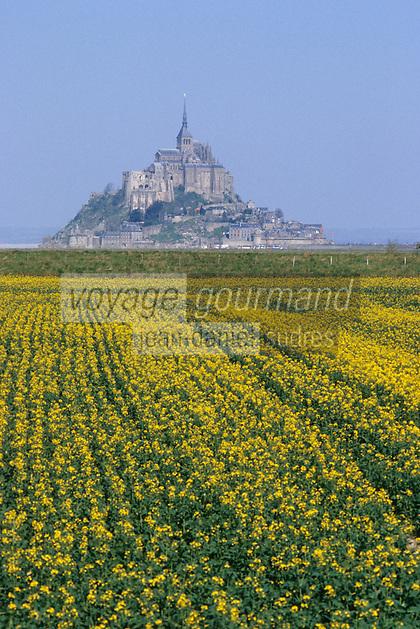 Europe/France/Normandie/Basse-Normandie/50/Manche/Baie du Mont Saint-Michel: Le mont vu depuis les cultures dans les polders