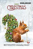 Sandra, CHRISTMAS ANIMALS, WEIHNACHTEN TIERE, NAVIDAD ANIMALES, paintings+++++,GBSSC75XS1,#xa#