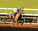 DEL MAR, CA - NOVEMBER 04: Good Magic  #6, ridden by Jose Ortiz, wins the Sentient Jet Breeders' Cup Juvenile  race on Day 2 of the 2017 Breeders' Cup World Championships at Del Mar Racing Club on November 4, 2017 in Del Mar, California. (Photo by Casey Phillips/Eclipse Sportswire/Breeders Cup)
