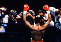 Boxer celebrates victory for the press