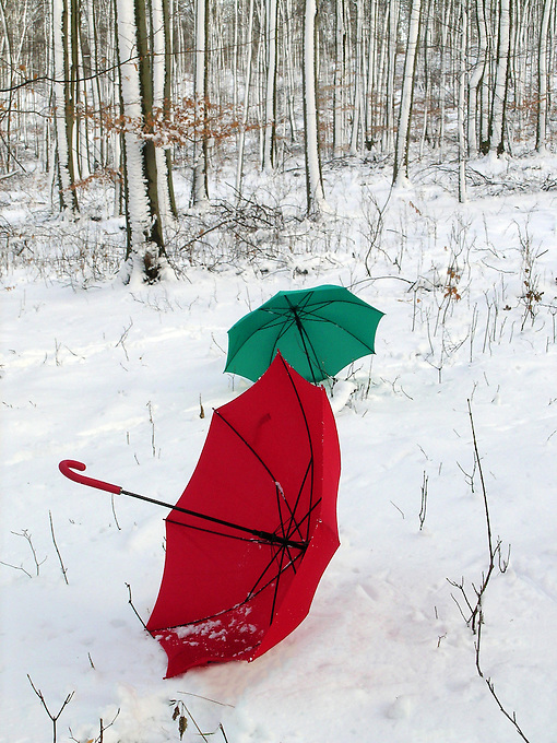 Colorful Umbrellas in a snow and winter landscape, Germany