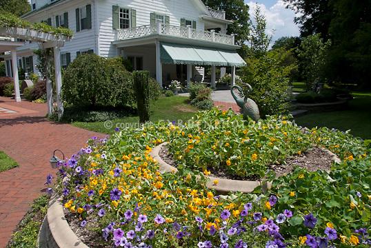 House, nasturtiums, petunias, blue skies, clouds, sunny, bird ornament statutes, trellis