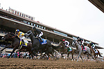 DEL MAR, CA - NOVEMBER 03: The takes the straight during the Breeders' Cup Las Vegas Dirt Mile on Day 1 of the 2017 Breeders' Cup World Championships at Del Mar Thoroughbred Club on November 3, 2017 in Del Mar, California. (Photo by Alex Evers/Eclipse Sportswire/Breeders Cup)