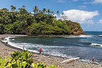 Surfers and others at Honoli'i Beach Park and Bay, Hilo, Big Island of Hawai'i.