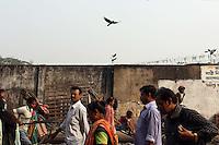 A bird flies over pedestrians in central Kolkata, India. November, 2013