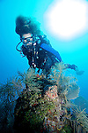 Diver and Spotted Scorpionfish, Islamorda, Florida