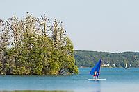 Insel Werl mit Kormoranen, Windsurfer, Bad Saarow, Scharmützelsee, Oder-Spree, Brandenburg, Deutschland