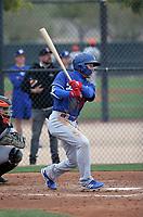 Jeren Kendall - Los Angeles Dodgers 2019 spring training (Bill Mitchell)
