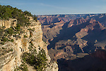 Morning at Pima Point in Grand Canyon National Park, Arizona .  John offers private photo tours in Grand Canyon National Park and throughout Arizona, Utah and Colorado. Year-round.