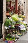 Flowers for sale, Paris, France