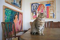 "Asie/Israël/Galilée/Arinim: ""Haseudah Haacharonah"" Maison d'Hote et galerie de Bella Skoldebrand - peintre et cuisinière - chat"