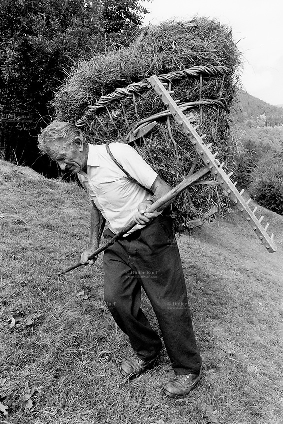 "Switzerland. Canton Graubünden. Soglio. Bregaglia valley. Making hay. An old man carries on his back hay in a wood basket, called "" campache"". Manual labor. Labour force. Pasture. Swiss alpine farmers. Alps mountains peasants. © 1993 Didier Ruef"