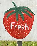 Strawberries sign fresh local Kent UK 2006